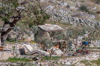 Robinson-house-Galisnjok-Bol-nature
